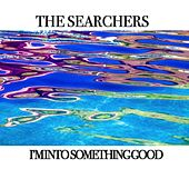 I'm Into Something Good de The Searchers