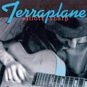 Terraplane by Elliott Sharp
