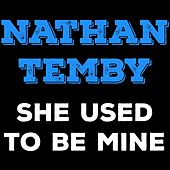 She Used to Be Mine de Nathan Temby