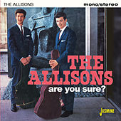 Are You Sure? van The Allisons