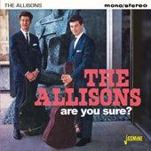 Are You Sure? di The Allisons