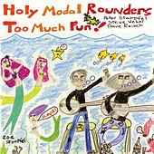 Too Much Fun! by The Holy Modal Rounders