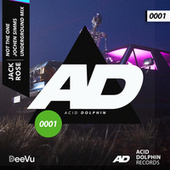 Not The One (Jochen Simms Remix) by Jack Rose