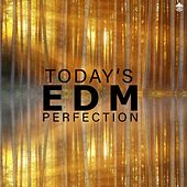 Today's EDM Perfection by Various Artists