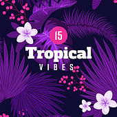 15 Tropical Vibes von Chill Out