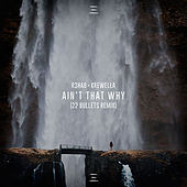 Ain't That Why (22 Bullets Remix) de R3HAB