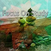 Focus On Study by Classical Study Music (1)