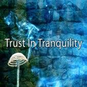 Trust In Tranquility von Massage Therapy Music