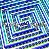 Fantasy Of Nature de Meditación Música Ambiente