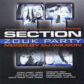 Section Zouk Party,  Vol. 2 de Various Artists