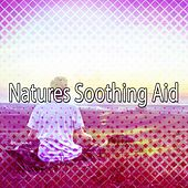 Natures Soothing Aid von Massage Therapy Music