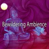Bewildering Ambience de Meditación Música Ambiente