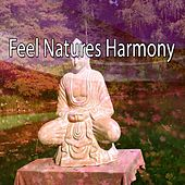Feel Natures Harmony de Nature Sounds Artists