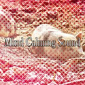 Mind Calming Sound de White Noise Babies