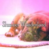 Slumber Wonderland de Water Sound Natural White Noise
