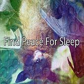 Find Peace For Sleep de Lullaby Land