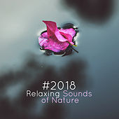 # 2018 Relaxing Sounds of Nature de Zen Meditation and Natural White Noise and New Age Deep Massage