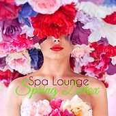 Spring Detox Spa Lounge – Best Lounge for Massage, Pilates, Wellness & Spa Treatments von Various Artists