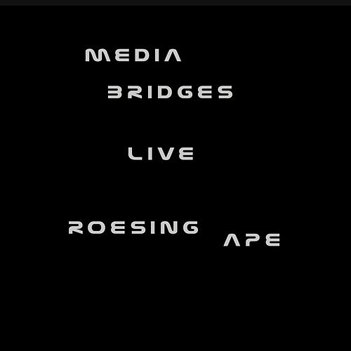 Media Bridges Live by Roesing Ape