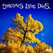 Sometimes Love Dies by Jason Reeves