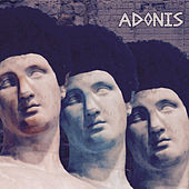 Adonis by Amira