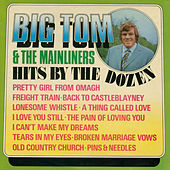 Hits by the Dozen by Big Tom