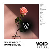 VOID: What About House Music? de Various Artists
