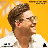 Ar Condicionado No 15 (Audax Remix) de AUDAX