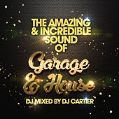 The Amazing & Incredible Sound of Garage, & House - EP von Various Artists