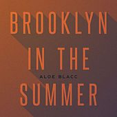 Brooklyn In The Summer by Aloe Blacc
