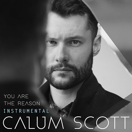 You Are The Reason (Instrumental) by Calum Scott