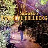 Ethereal Bollocks by Miles Grindey