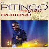 Mestizo y fronterizo by Pitingo