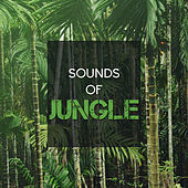 Sounds of Jungle by Nature Sounds (1)