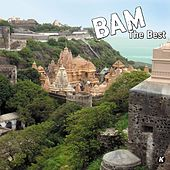 Bam The Best de Various Artists