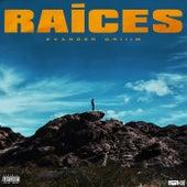 Raices by Evander Griiim