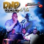 Roda de Samba Inabalável e Convidados (Ao Vivo) by Grupo Diz no Pé