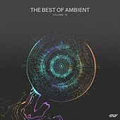The Best of Ambient, Vol.10 by Various Artists