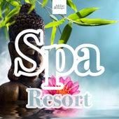 Spa Resort - Wellness Massage Music, Sauna Background Music, New Age Relaxing Music de Sounds Of Nature