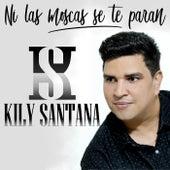 Ni las Moscas Se Te Paran de Kily Santana