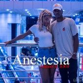 Anestesia von Antenor