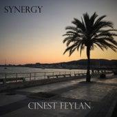 Synergy van Cinest Feylan