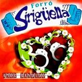 Forró Siriguella, Vol. 5 - Amor Bandido von Forró Sirigüella