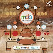 The DNA of Rhythm by Magic Drum Orchestra