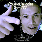 Regreso al futuro de El Gato DJ