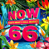 NOW That's What I Call Music, Vol. 66 by Various Artists