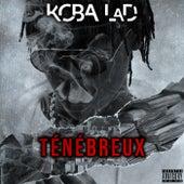Ténébreux de Koba LaD