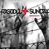 Immigrant von Ragdoll Sunday