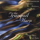The Tranquil Harp de Paul Baker