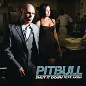 Shut It Down by Pitbull